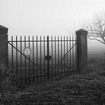 Misty morning, Lacoste
